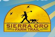 sierra-oro